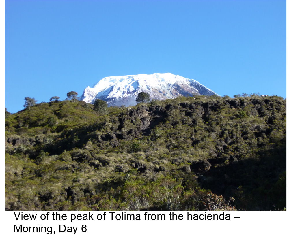 The snowy peak of Tolima, in the Colombia Andes