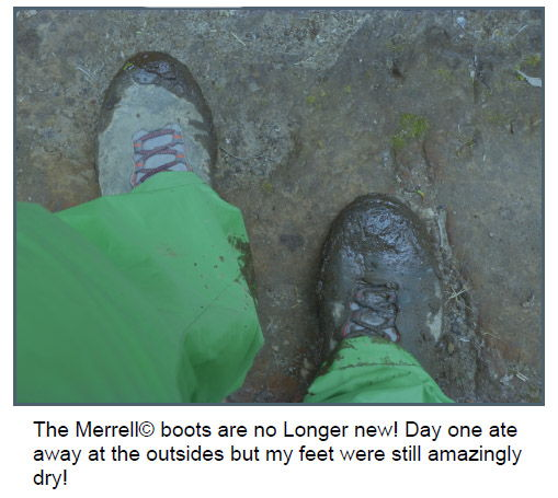 Merrell Moab Hikers remained tough and protective