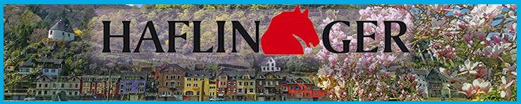 haflinger-2017-1-logo-banner-slippers-and-clogs-mens-womens-childrens-springtime-banner.jpg