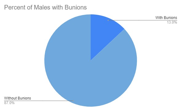 Pie Chart showing that 13% of men will suffer from bunions.